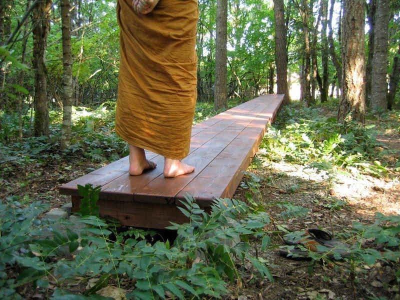Осознавание четырех элементов при ходьбе