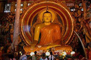 Буддийские лесные монастыри и центры медитации на Шри-Ланке