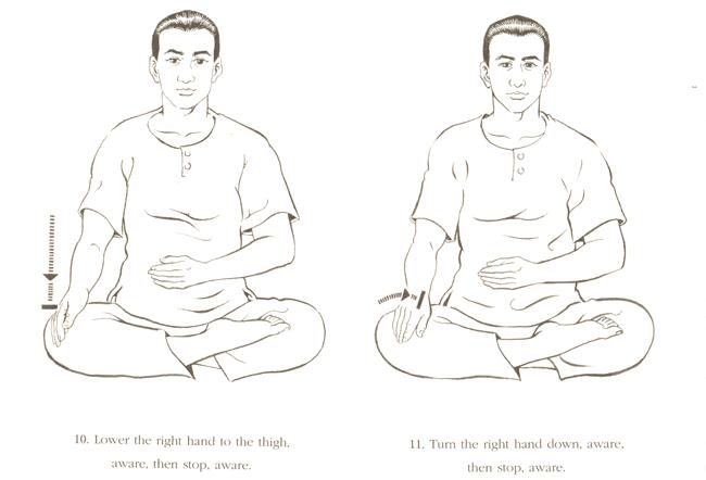 Динамическая медитация 5